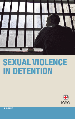 Sexual violence in detention